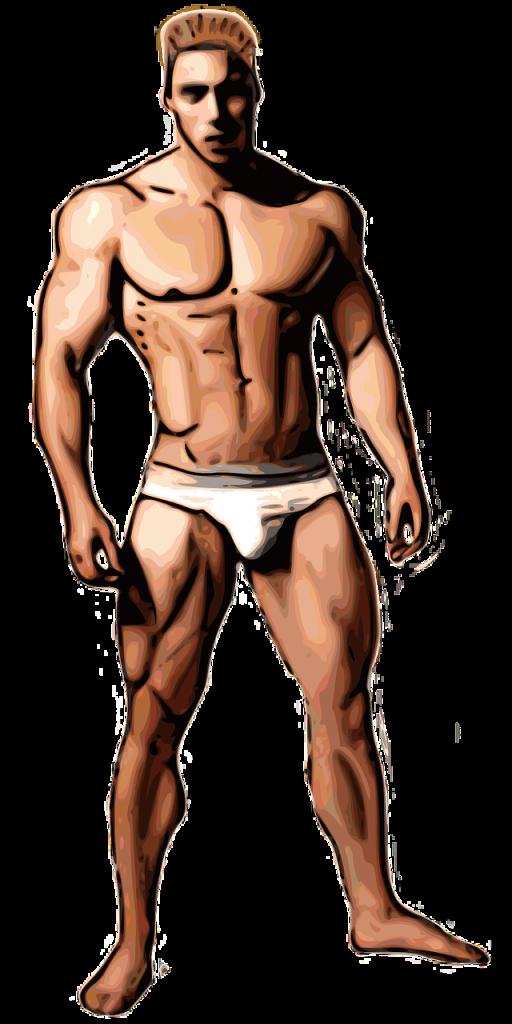 bodybuilder-158289_1280